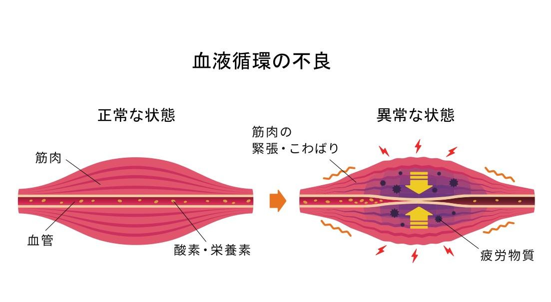 コンディショイング整体は血液循環を流す事から