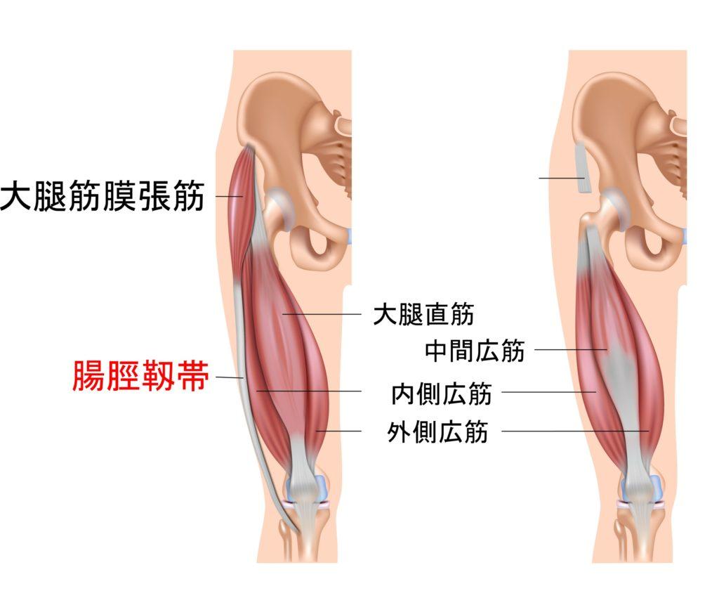 腸脛靱帯炎は青葉台のくまのて接骨院へ
