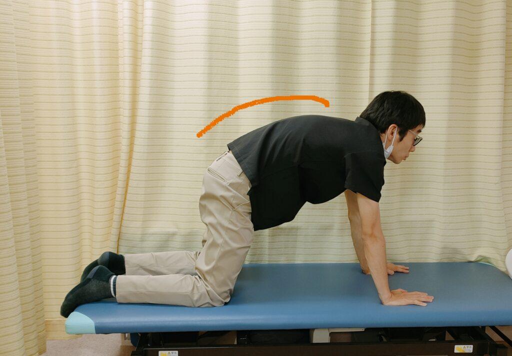 姿勢を整える胸椎運動のやり方①
